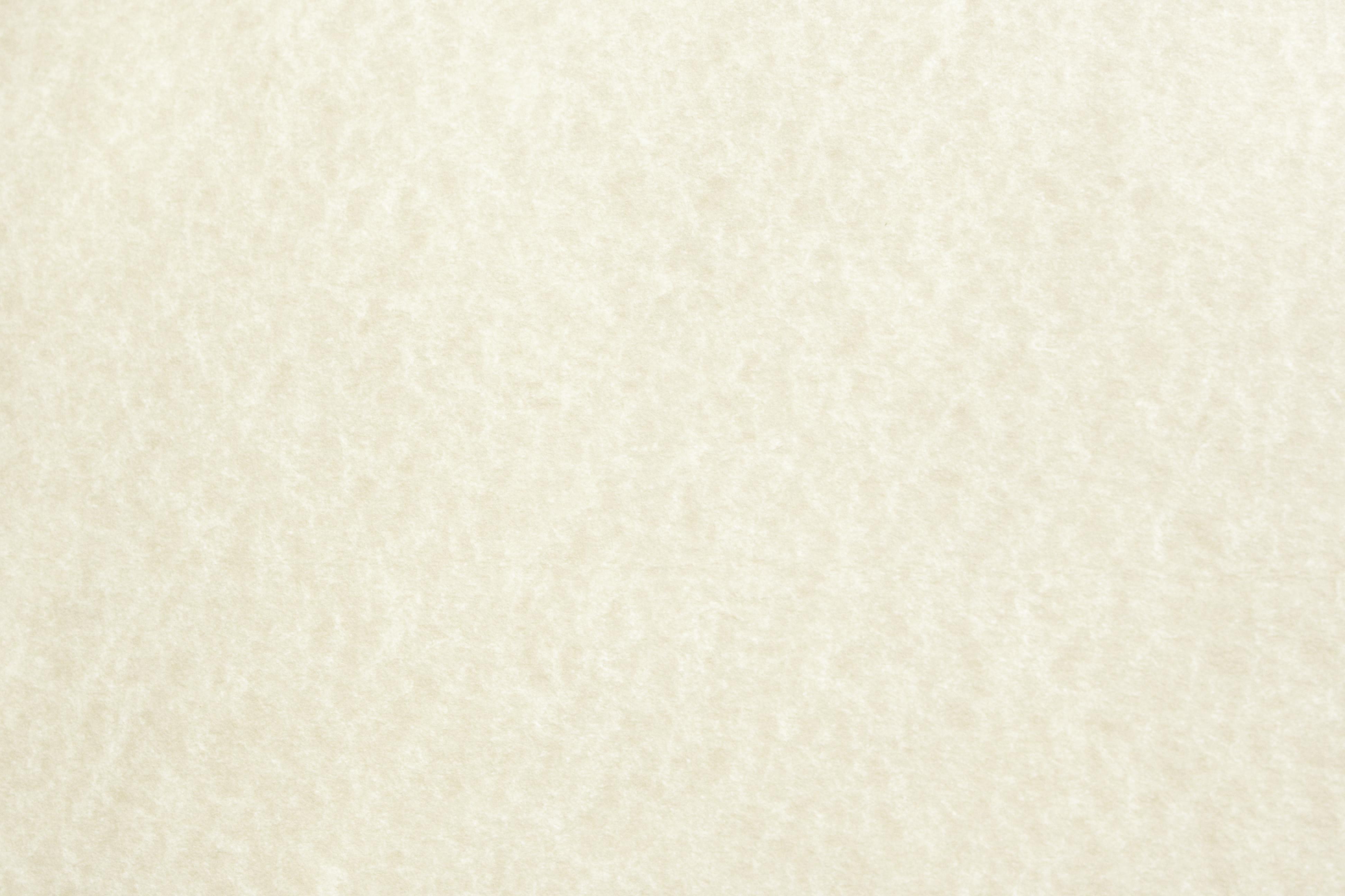 Parchment Paper Paint Color